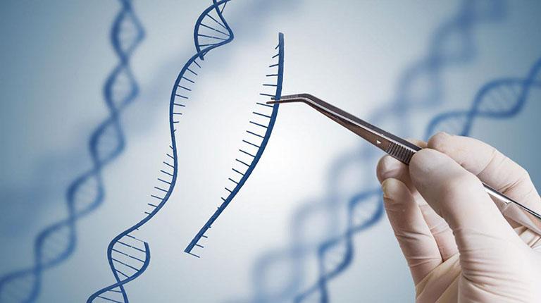 Xét nghiệm ADN thai nhi ở đâu nhanh chóng