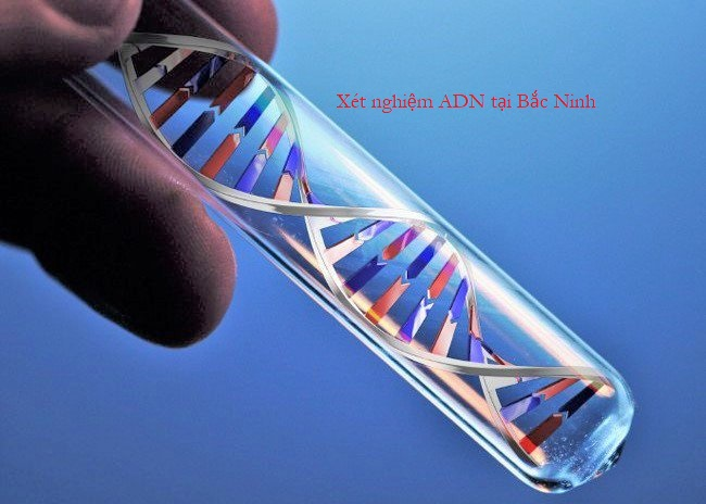 Xét nghiệm ADN ở Bắc Ninh nhanh chóng