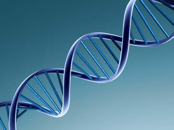 Xét nghiệm ADN Bắc Ninh ở đâu chính xác
