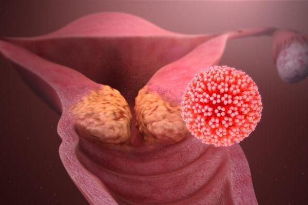 virus hpv tồn tại trong cơ thể bao lâu