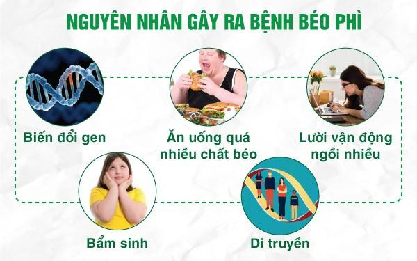 các nguyên nhân gây béo phì
